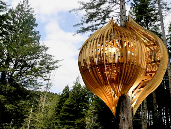 Futuristic Treehouse Ture In Belgium Home Design Garden
