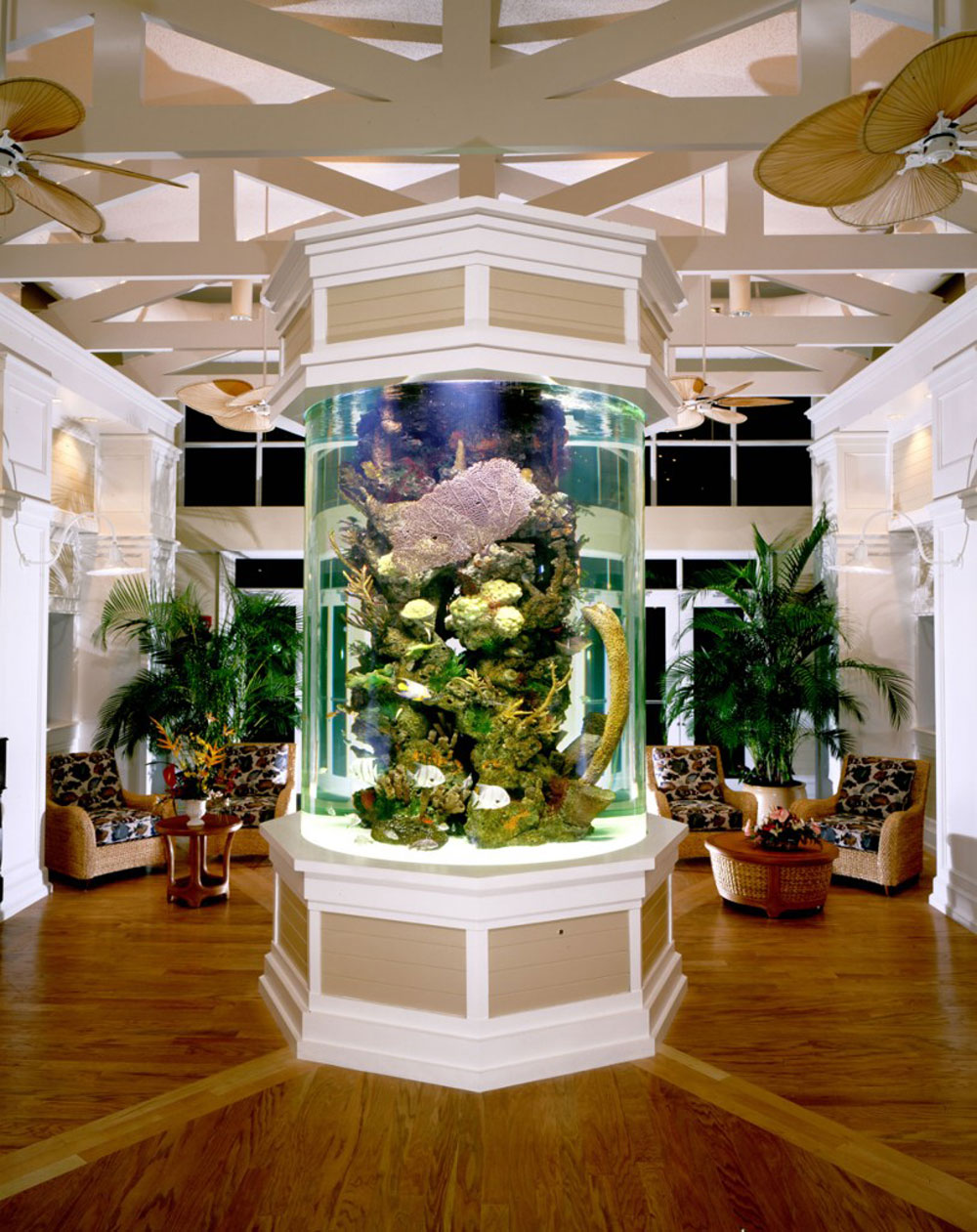 Change The Look Of Your Room With These Home Aquarium Tanks - Home aquarium design