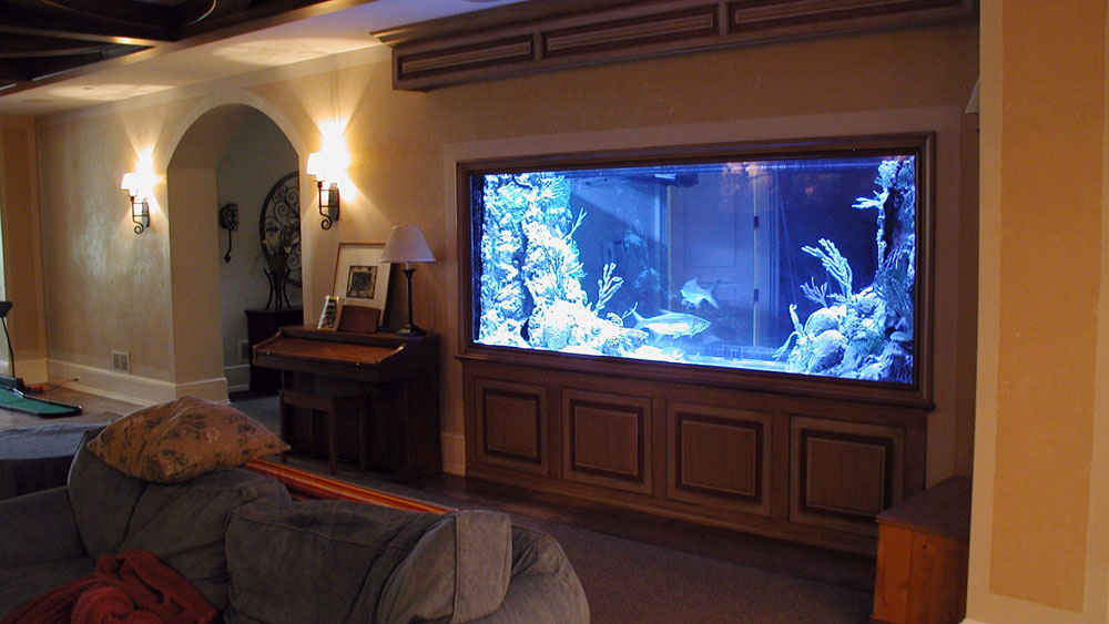 Living Room Decorating Ideas Fish Tank change the look of your room with these home aquarium tanks