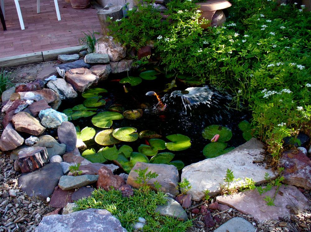 Create A Unique Backyard With These Garden Pond Design Ideas