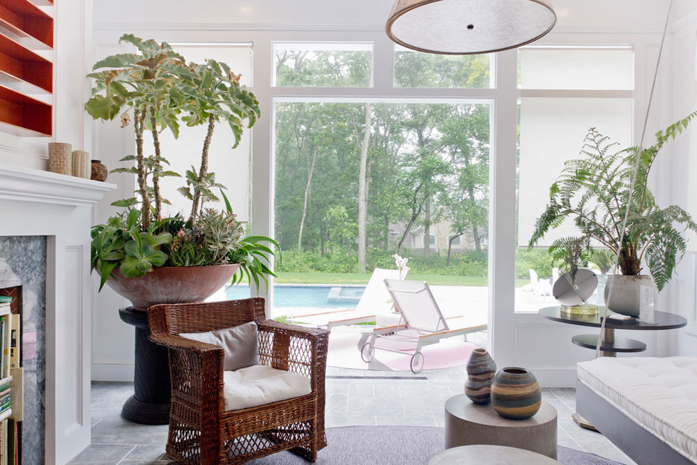 Decorating Your House S Interiors With Plants 4