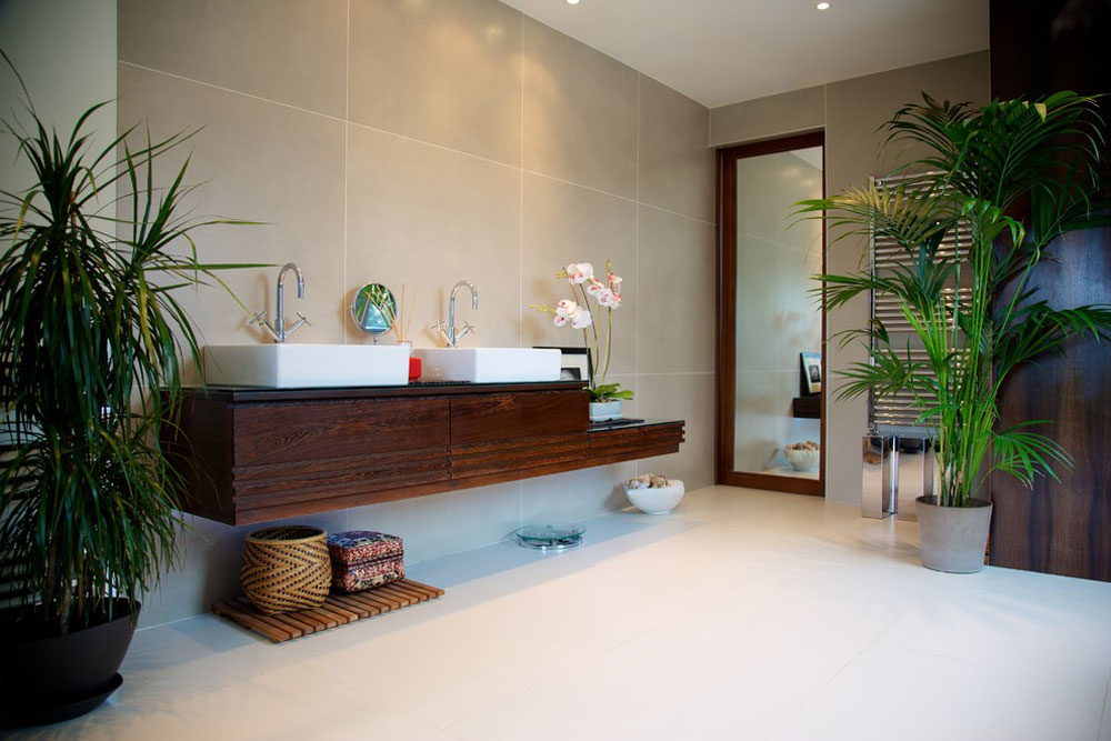 Decorating Your House\'s Interiors With Plants