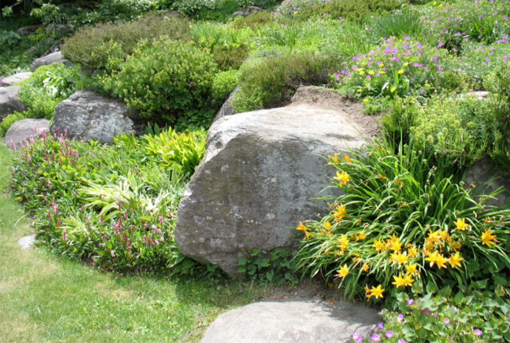image 3 7 rock garden ideas how to create a rock garden - Rock Garden Ideas