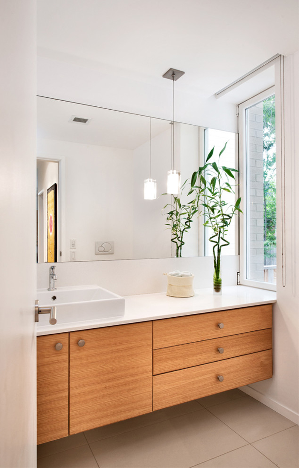 Best Plants for Bathroom: Which is the right one for you? on for a restaurant, for a closet, for a desk, for a beach, for a safe, for a bar, for a family,