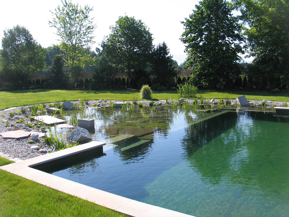 Diy Pool How To Build A Natural Swimming Pool