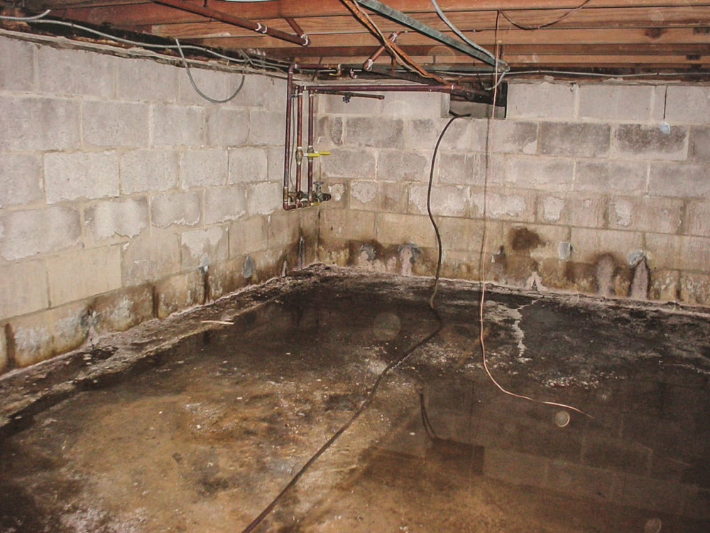 Get Rid Of Musty Smell In Basement, How To Rid Basement Smell